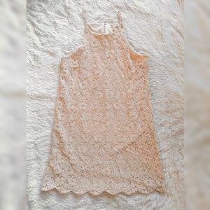Monteau Pale Pink Lace Mini Dress